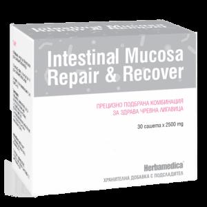 Intestnial Mucosa